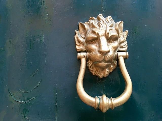devant de porte lion